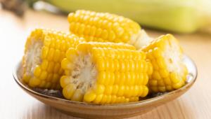 O milho, além de saboroso, é nutritivo e ajuda no controle de peso