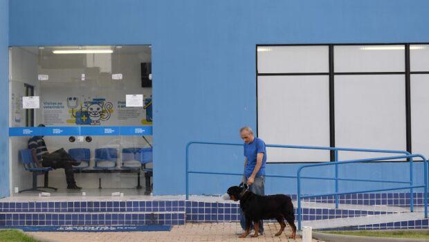 Hospital Veterinário do Recife terá mil vagas para castração gratuita em novembro. Saiba como agendar