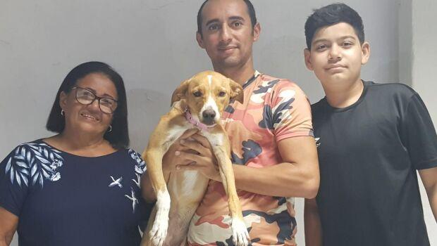 Depois de 25 dias desaparecida, cadela reencontra a família