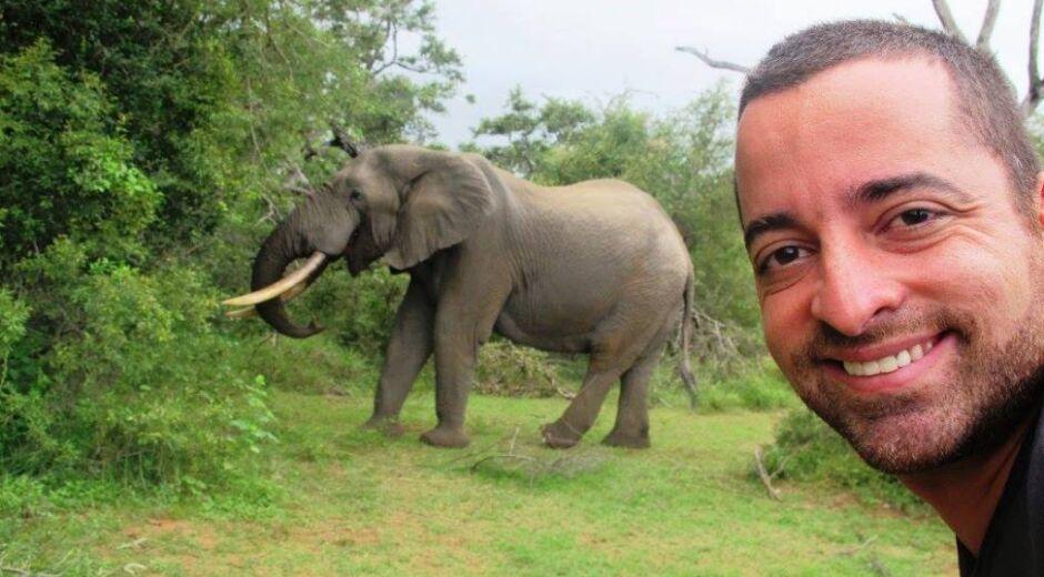 Safári na África: como ir, o que fazer e o que ver nesta aventura