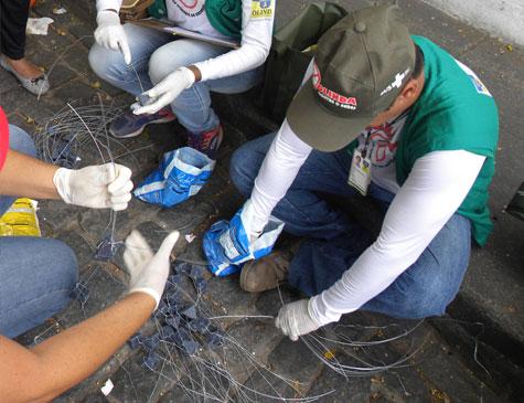 Agentes aplicaram iscas para os roedores