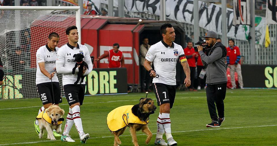 Jogo do Colo Colo foi suspenso por um caso positivo de Covid
