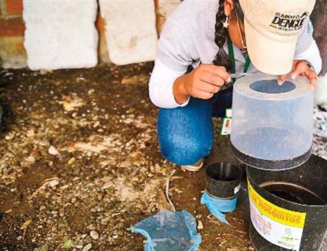 Comitê quer reunir secretarias e órgãos da Prefeitura para estabelecer uma ação conjunta para o combate às arboviroses