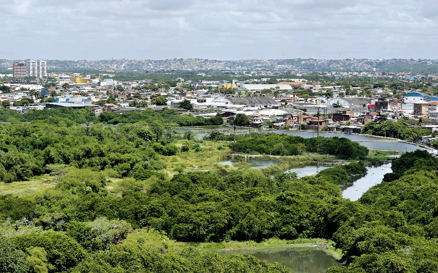 A Ilha do Zeca (foto) e o Parque dos Manguezais estão entre as UCs a serem estudadas. Nelas, a carcinicultura (criação de camarões em  viveiros) é a principal atividade econômica