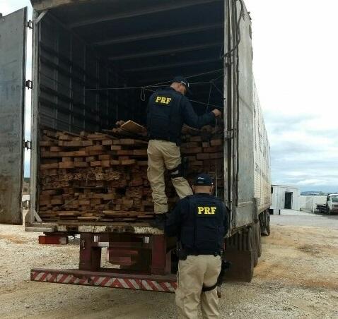 Caminhão transportava madeira irregular