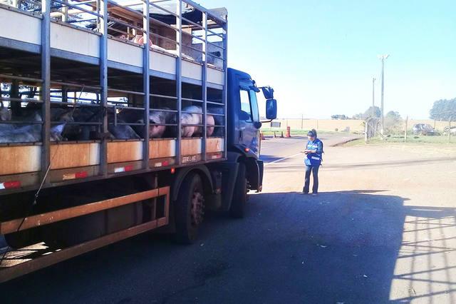 CNA encaminhou ofícios solicitando, aos Ministérios da Defesa e da Segurança Pública, que sejam feitas escoltas para o transporte de produtos perecíveis, carga viva e insumos para garantir o abastecimento dos produtores