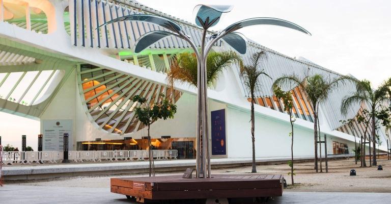 Estrutura semelhante a uma árvore será instalada no Jardim do Baobá; modelo já funciona no Ceará