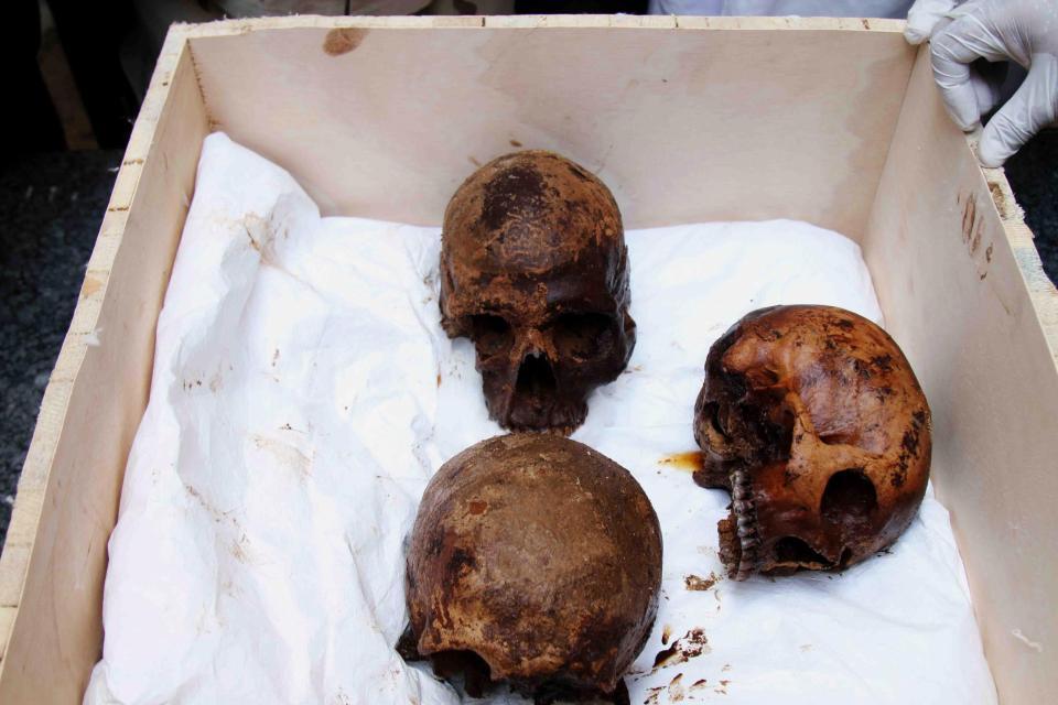 Crânios das três múmias encontradas