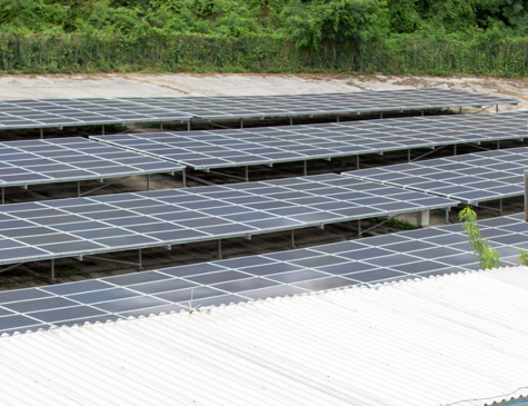 Placas solares em Noronha