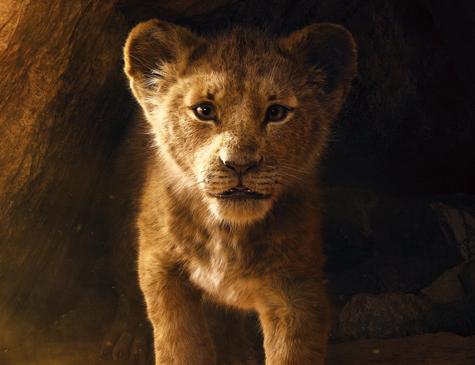 O Rei Leão em versão live-action foi lançado em 2019