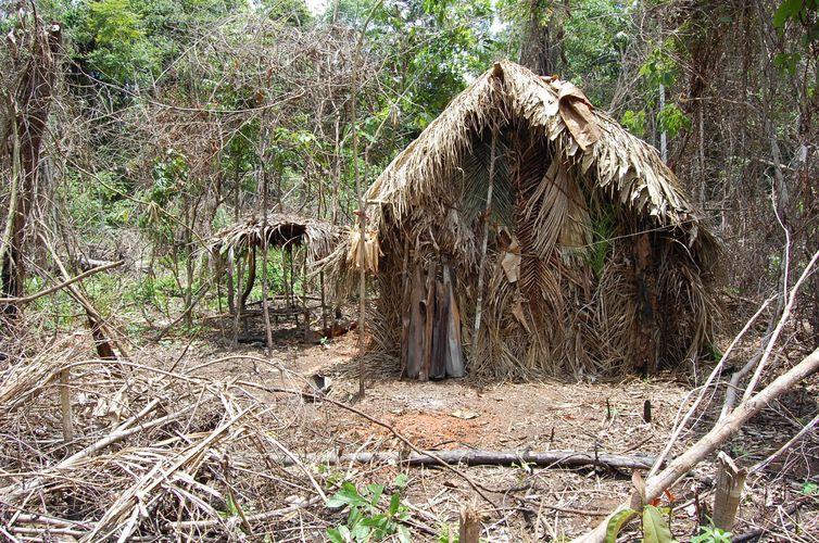 Índios da Terra Indígena Tanaru vivem isolados na Amazônia