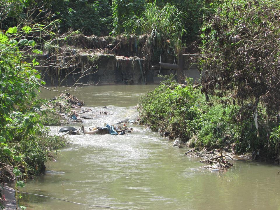 Córrego Ribeirão Perus