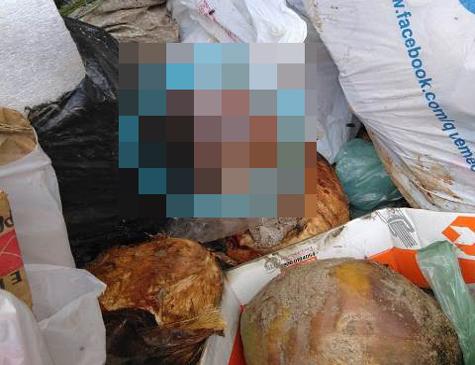 Corpo do bebê foi encontrado em caçamba de lixo