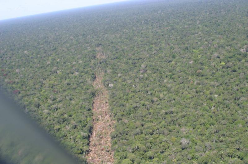 Vale do Javari, no Amazonas