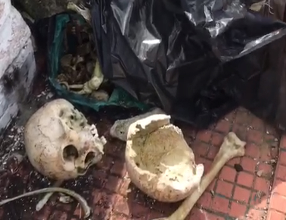 Crânios foram flagrados no meio do cemitério