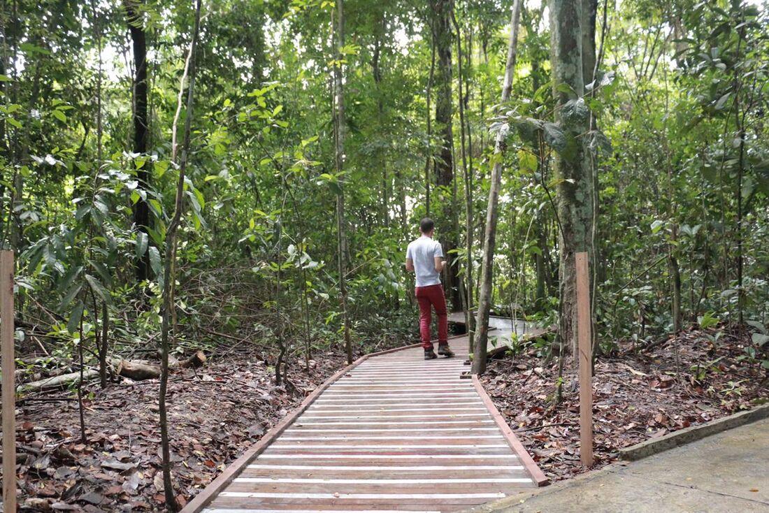 Trilha acessível do Jardim Botânico do Recife