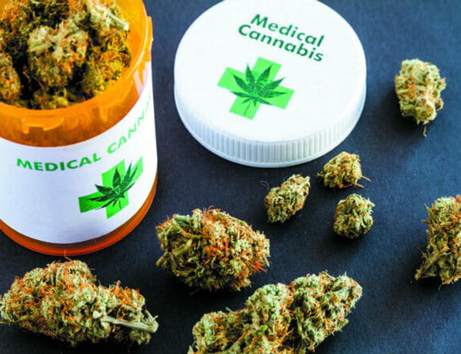 Cannabis é utilizada de forma medicinal por diversos pacientes
