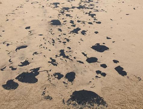 A substância foi encontrada em praias de Olinda, Recife e Ipojuca