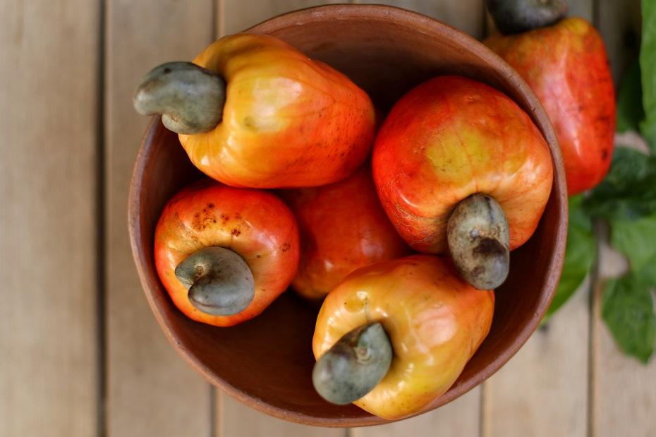 Nutriente auxilia na imunidade e saúde geral do corpo