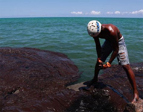 Voluntário limpando óleo no mar do Janga, em Paulista