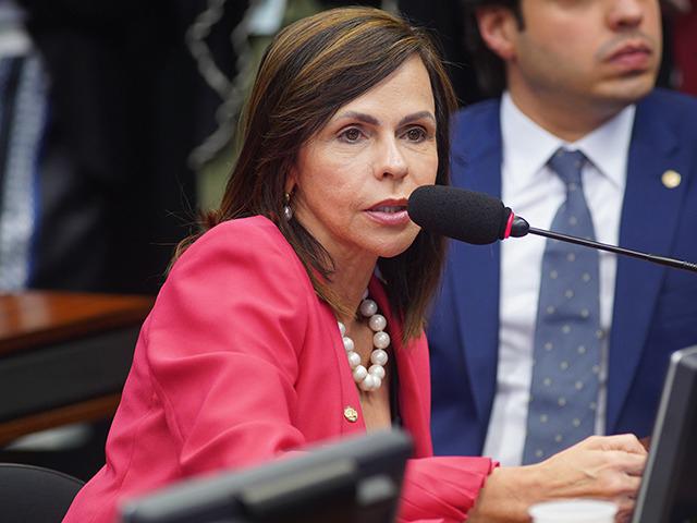 Deputada Professora Dorinha (DEM-TO)