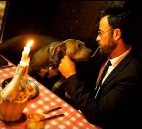 Ator Justin Theroux e sua pitbull Kuma