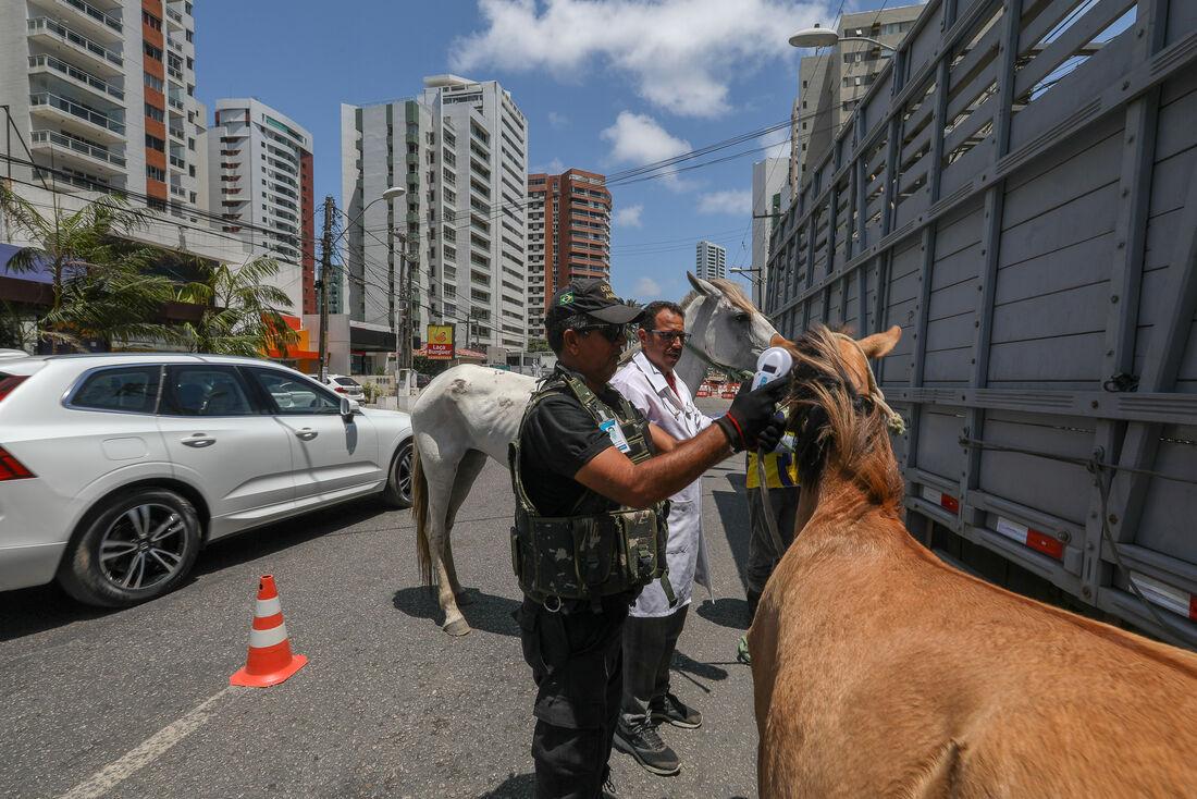 Os objetivos da Prefeitura do Jaboatão dos Guararapes são reduzir os riscos de acidente de trânsito e à saúde pública