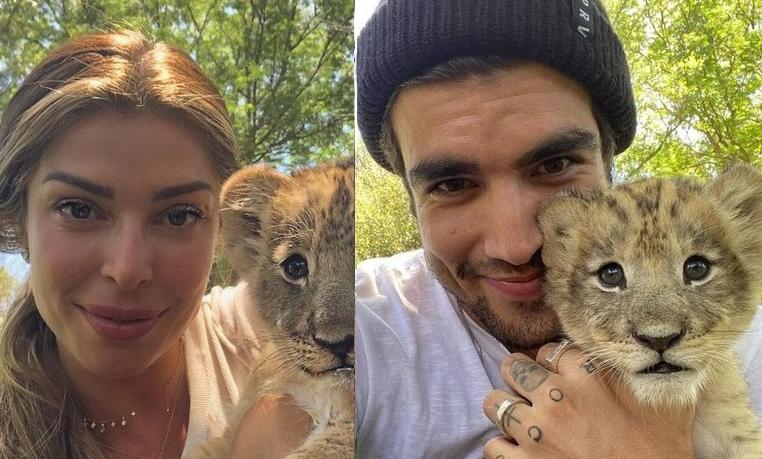 Grazi e Caio postaram fotos com filhotes de leão, durante safari na Africa do Sul