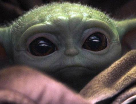 Baby Ioda