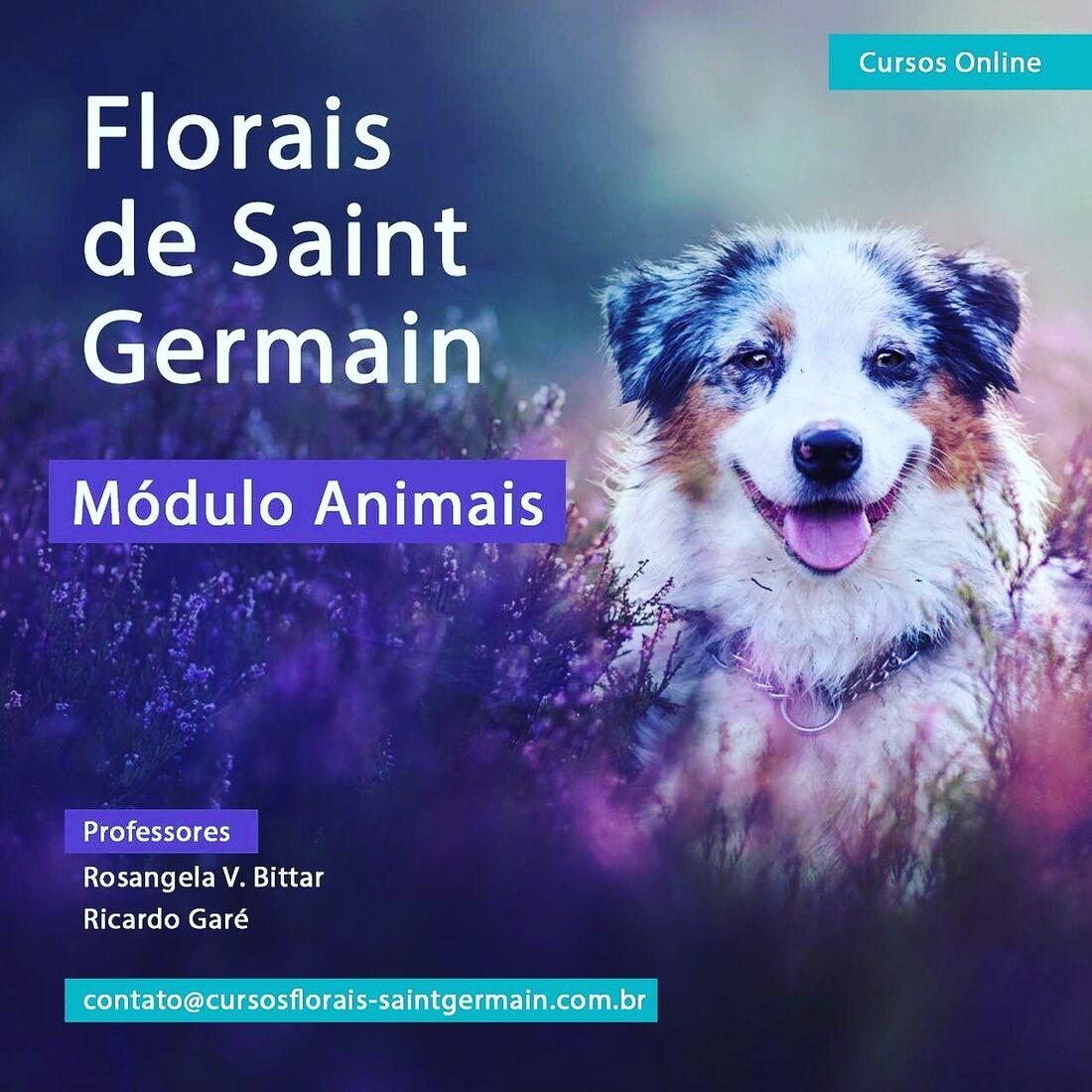 EVENTO CURSO ONLINE Florais de Saint Germain - Módulo Animais