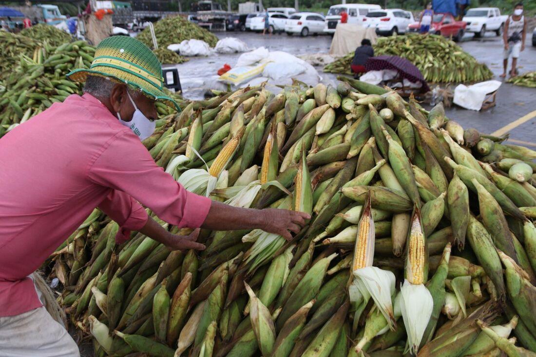 Comércio de milho no Ceasa