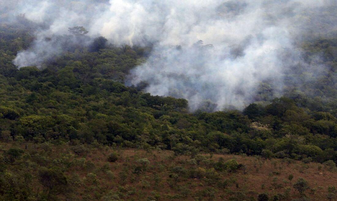 Incêndio em floresta brasileira