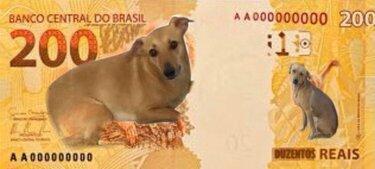Nota de R$ 200,00 (meme) ilustrada com a foto do cachorro caramelo