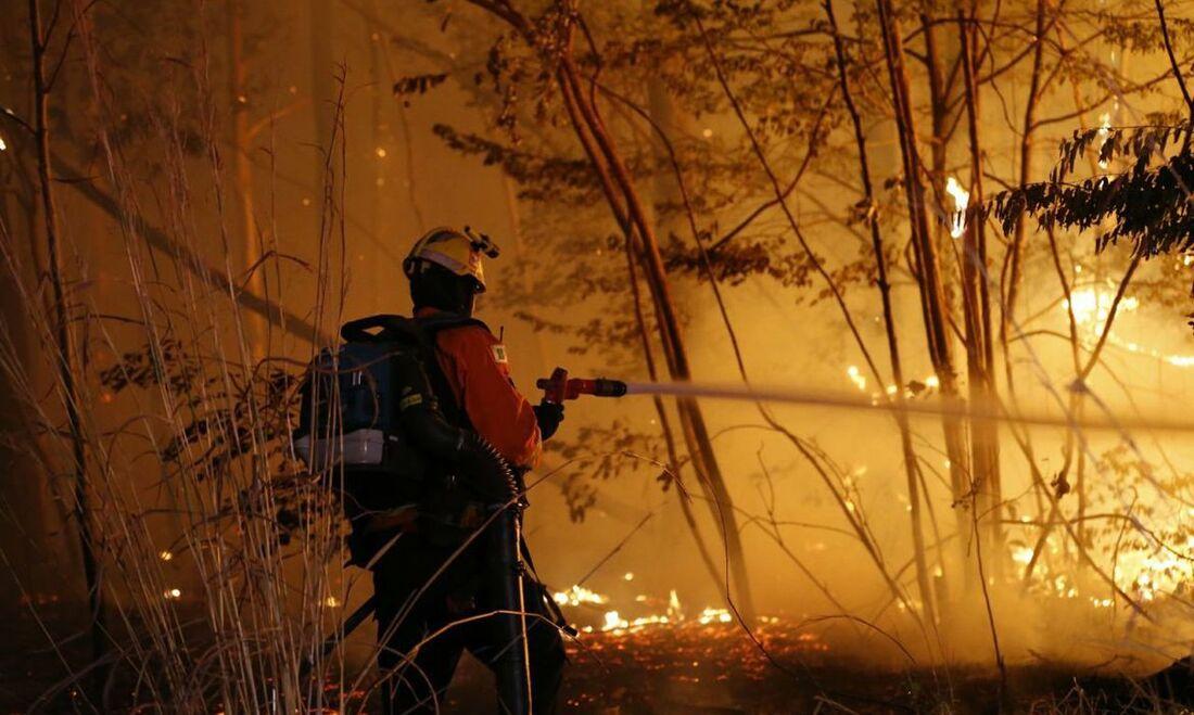 Incêndio na Floresta Nacional de Brasília (Flona)
