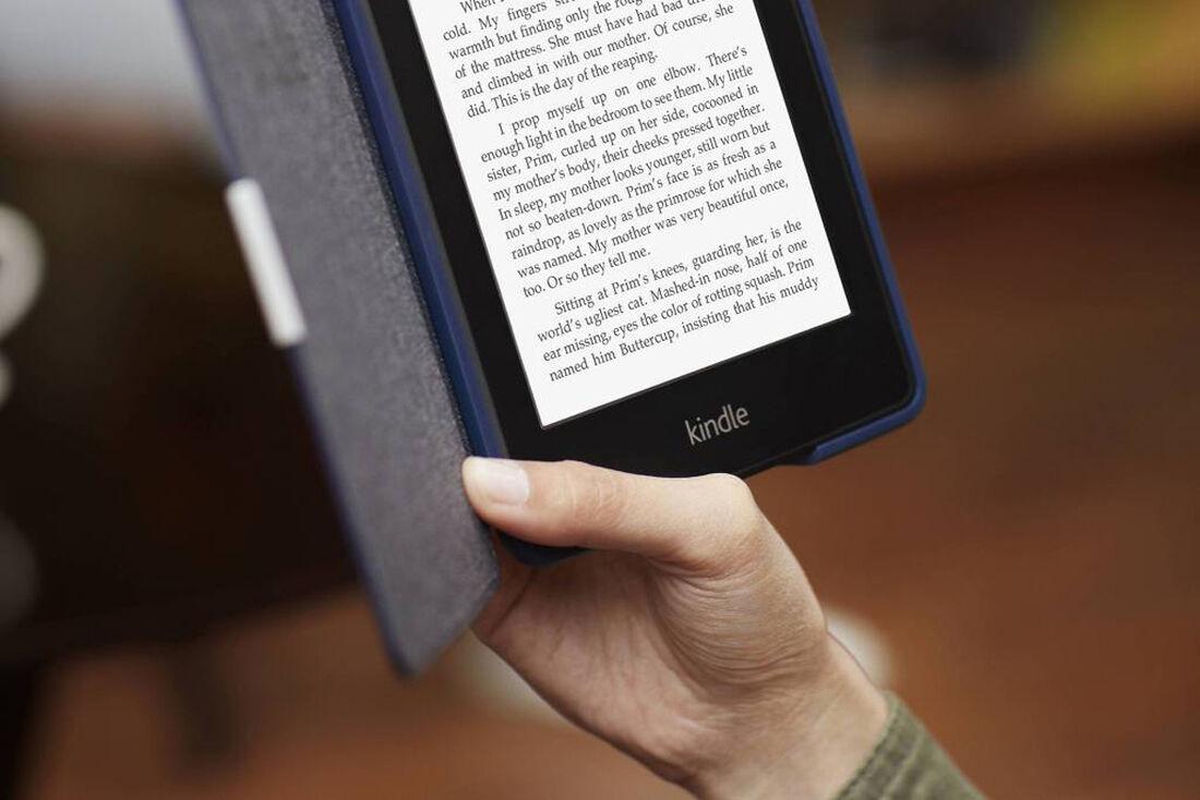 Vendas de livros digitais