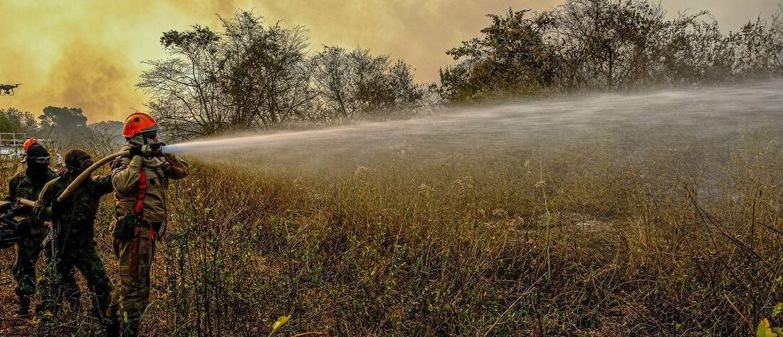 Queimadas devastam região do Pantanal