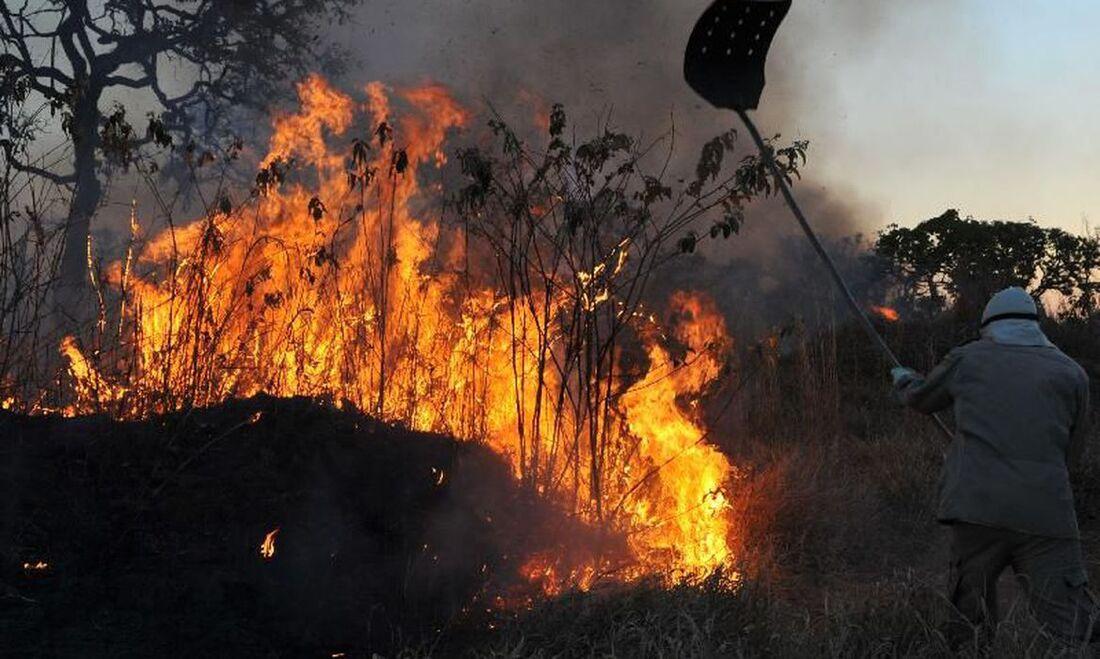 Vianna Barreto esteve na região do Pantanal em apoio às ações de enfrentamento aos incêndios