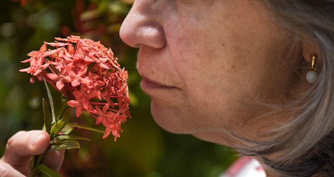 Ausência de olfato e paladar também pode etar relacionada com problemas neurológicos