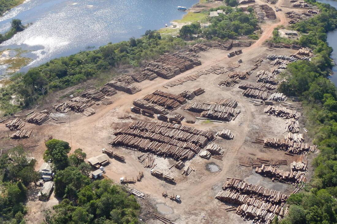 Toras de madeira nativa apreendidas durante a Operação Handroanthus GLO, em 2020, no Pará