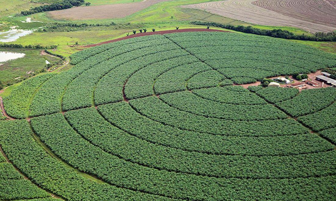 Agroindústria