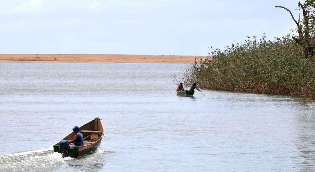 Pesquisadores encontram metais tóxicos em peixes do Rio Doce