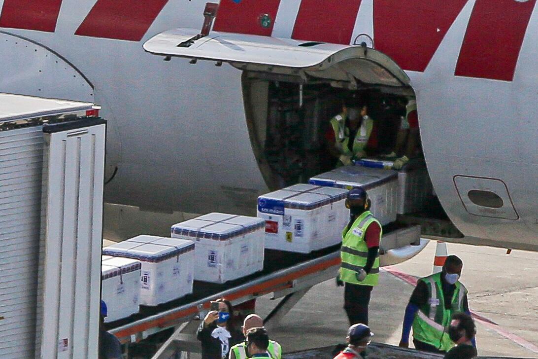 Primeiro lote com imunizantes desenvolvidos pela Pfizer chega ao Recife
