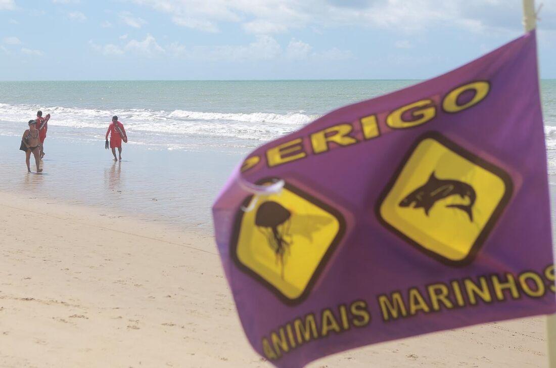 Praia de Piedade após ataque de tubarão