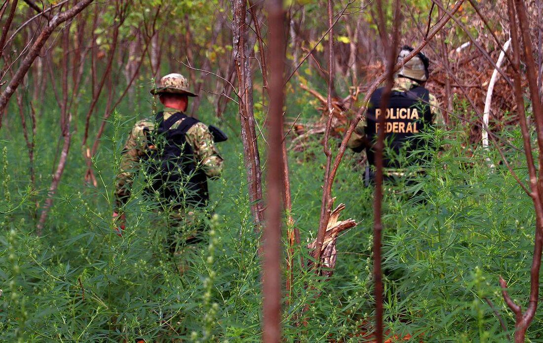Ação da Polícia Federal no Sertão de Pernambuco