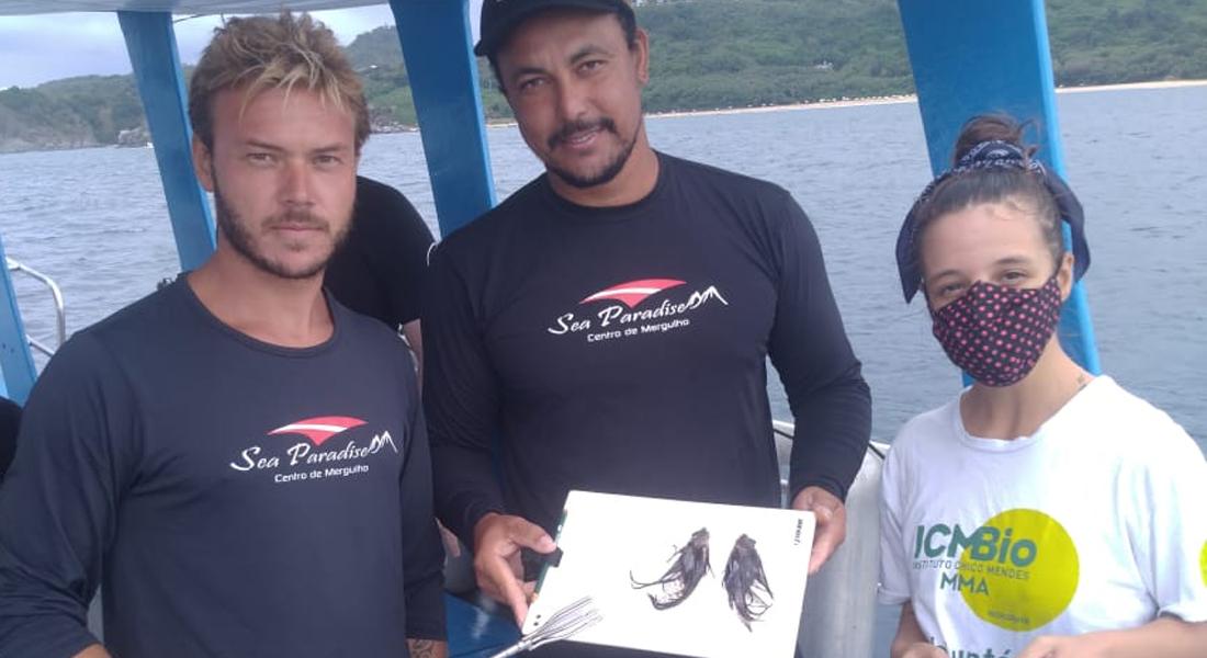Peixes-leão capturados em Fernando de Noronha