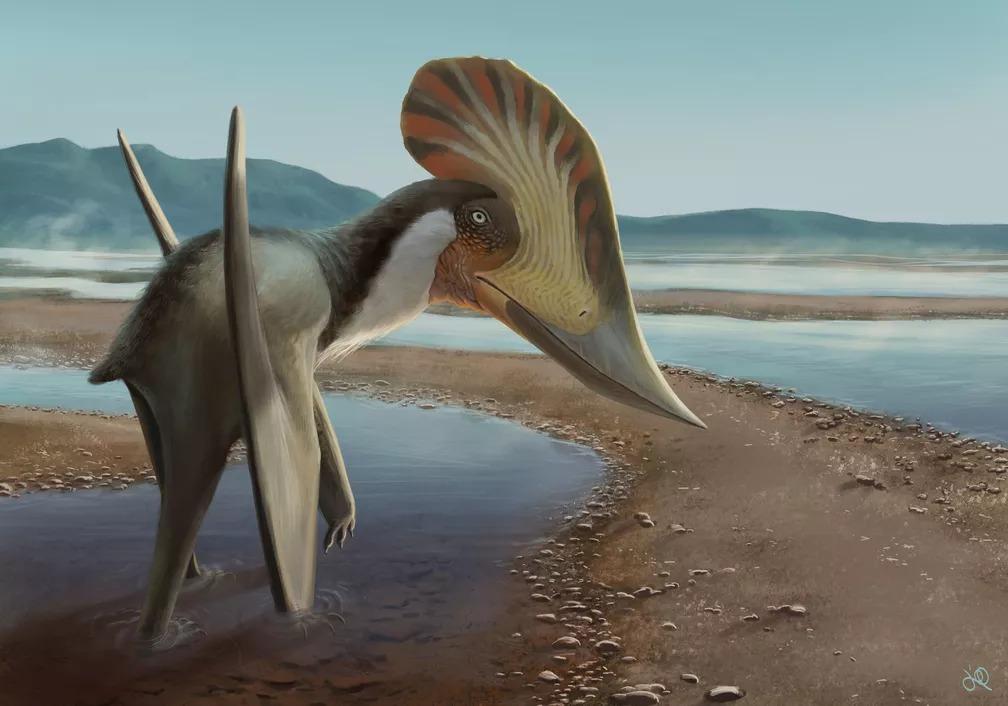 Ilustração do Kariridraco dianae, que habitou em região de Pernambuco há 100 milhões de anos
