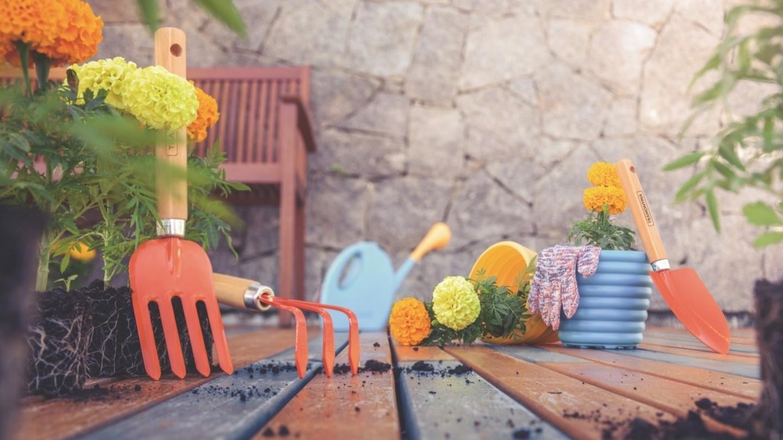 Atividades significativas, como a jardinagem, mesmo em pequenos ambientes, ajudam na saúde mental, principalmente neste período de pandemia