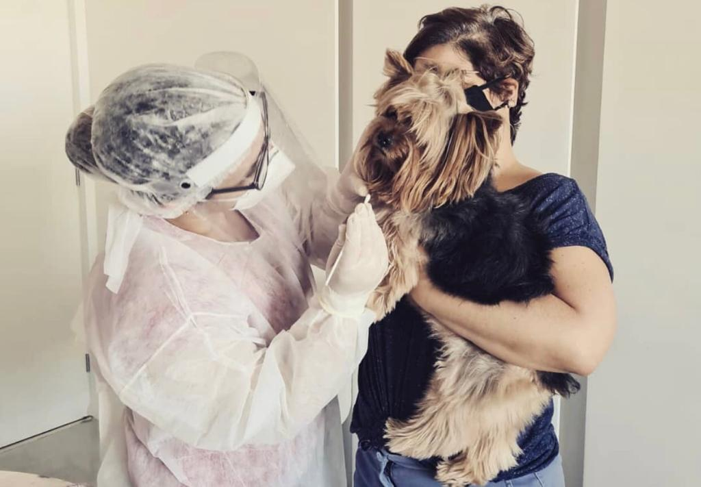 Pesquisa da UFRPE sobre o novo coronavírus em pets