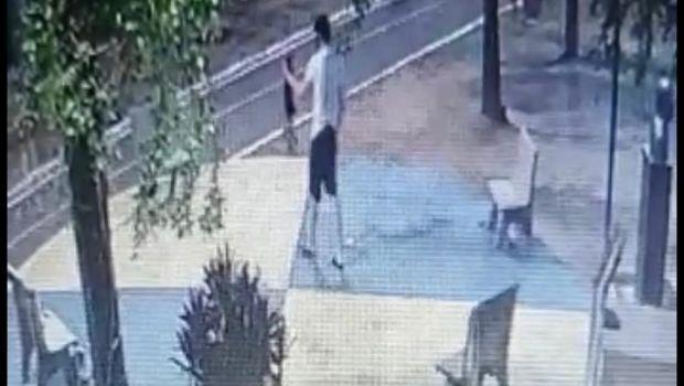 Suspeito de torturar e matar cinco animais na avenida Beira-rio
