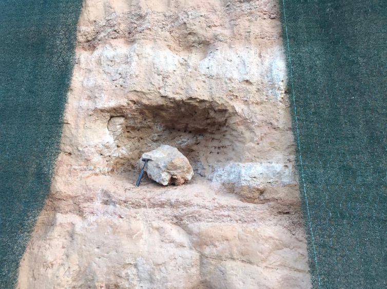 Fóssil de dinossauro é encontrado no interior de SP - Divulgação/ Entrevias/ Direitos Reservados